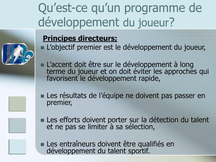 Qu'est-ce qu'un programme de développement