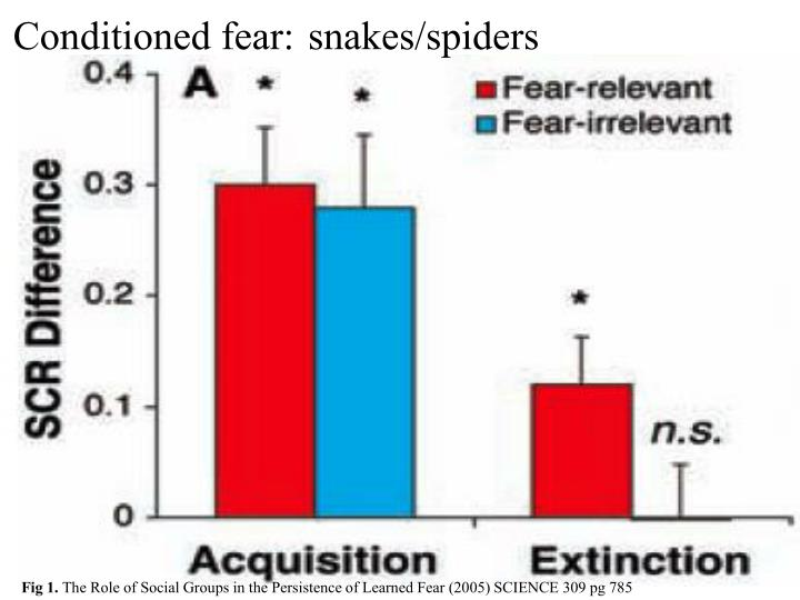 Conditioned fear: