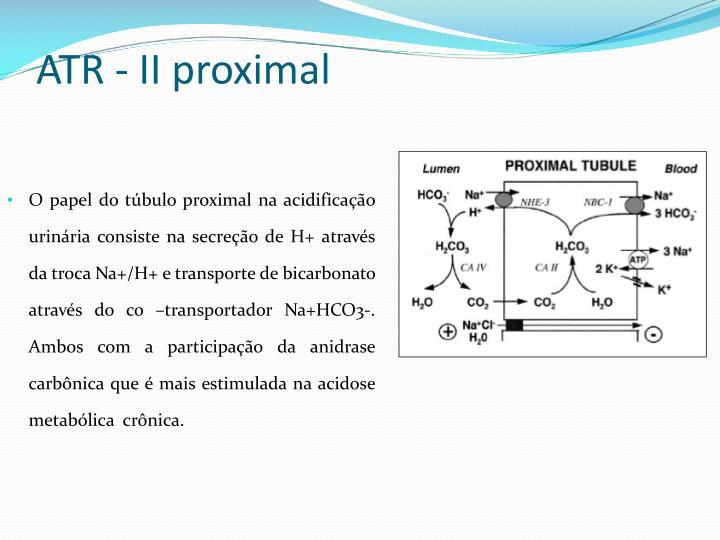 ATR - II proximal