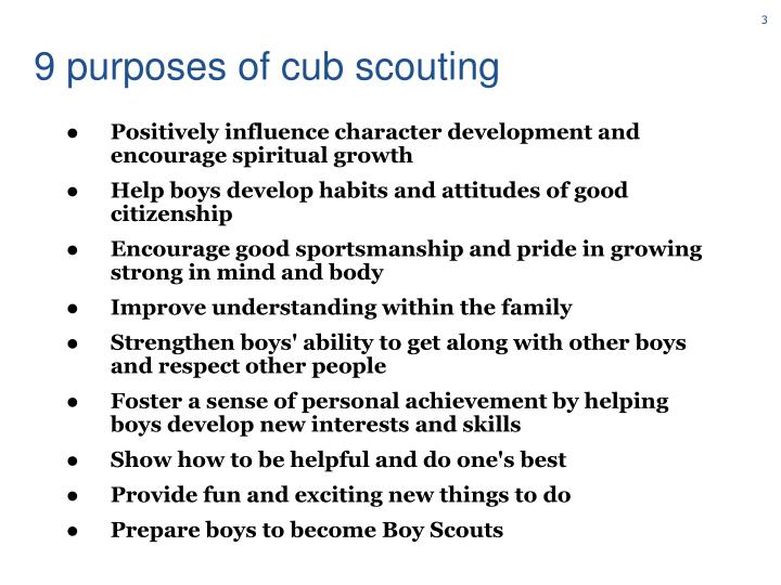 9 purposes of cub scouting