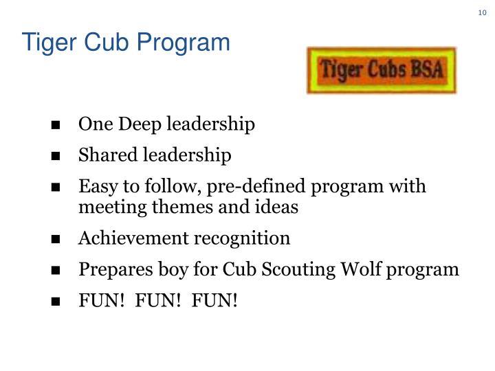 Tiger Cub Program