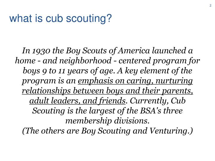 What is cub scouting