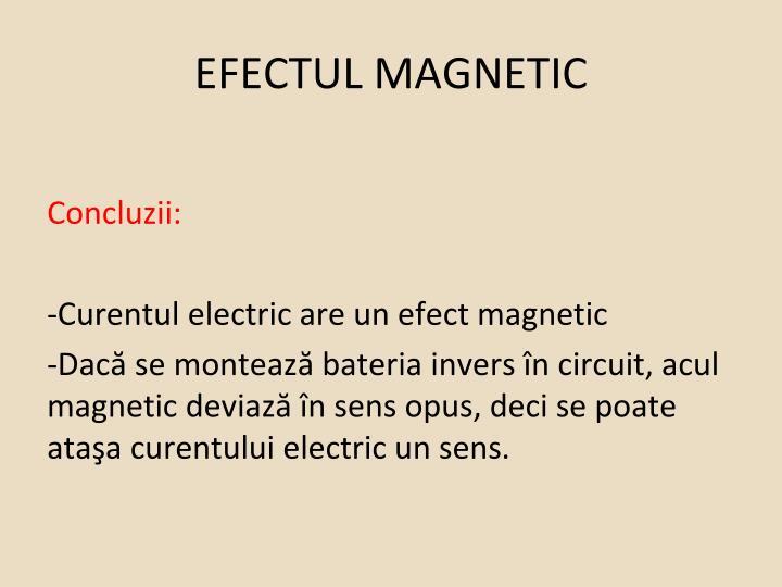EFECTUL MAGNETIC