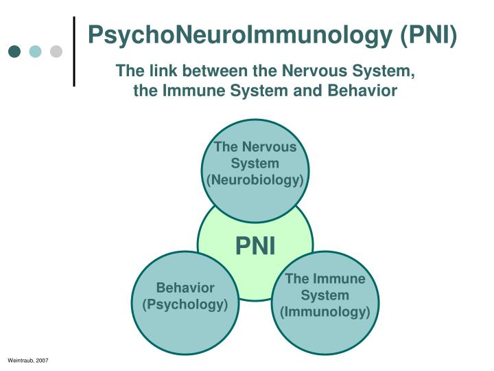 psychoneuroimmunology case essay Cambridge core - biological psychology - health psychology - by antonia c lyons.