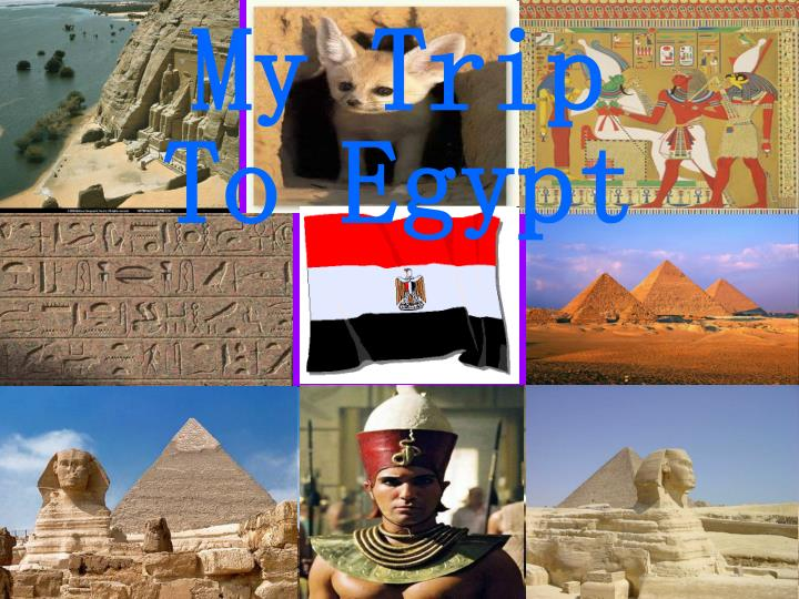 Egypt Private Tours