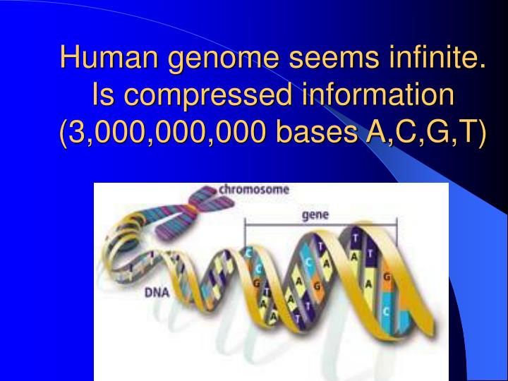 Human genome seems infinite. Is compressed information (3,000,000,000 bases A,C,G,T)