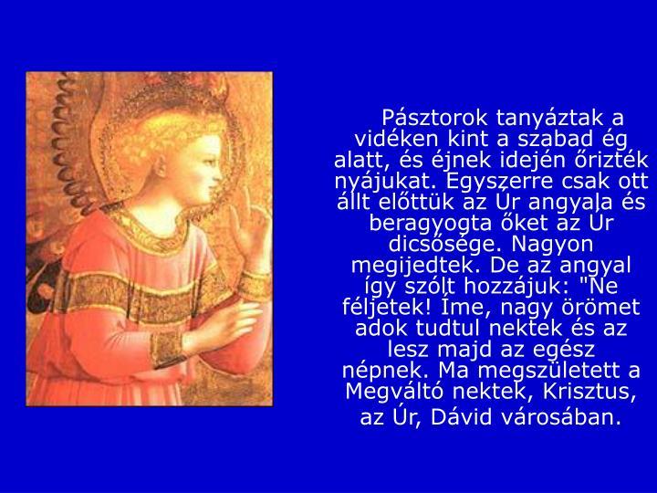 """Pásztorok tanyáztak a vidéken kint a szabad ég alatt, és éjnek idején őrizték nyájukat.Egyszerre csak ott állt előttük az Úr angyala és beragyogta őket az Úr dicsősége. Nagyon megijedtek.De az angyal így szólt hozzájuk: """"Ne féljetek! Íme, nagy örömet adok tudtul nektek és az lesz majd az egész népnek.Ma megszületett a Megváltó nektek, Krisztus, az Úr, Dávid városában."""