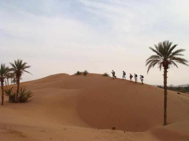 Sahara desert trek project 30 th march 6 th april 2014