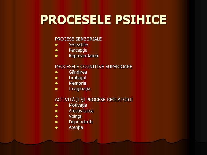 PROCESELE PSIHICE