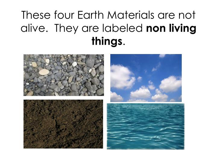 These four Earth Materials are not alive.  They are labeled