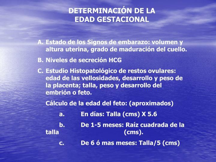 DETERMINACIÓN DE LA  EDAD GESTACIONAL