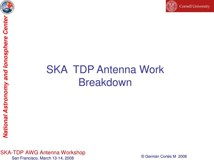 SKA  TDP Antenna Work Breakdown