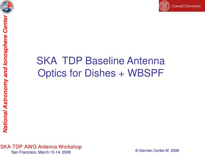 SKA  TDP Baseline Antenna Optics for Dishes + WBSPF