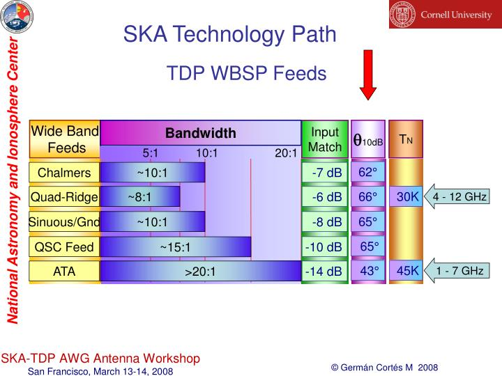 SKA Technology Path