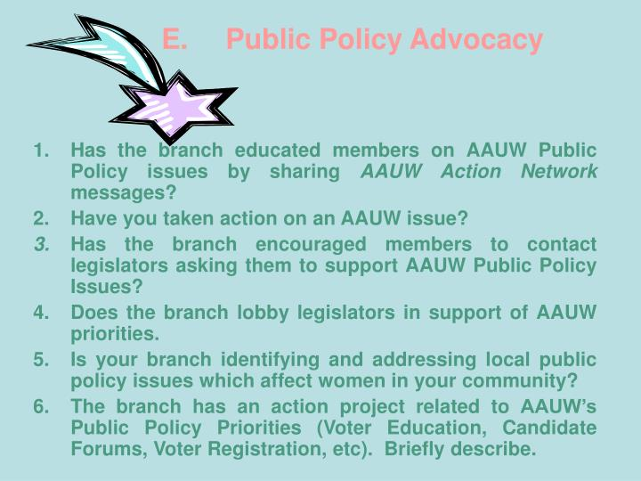 E. Public Policy Advocacy