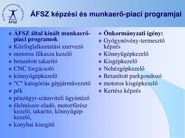 ÁFSZ által kínált munkaerő-piaci programok