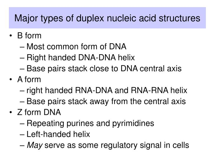 Major types of duplex nucleic acid structures