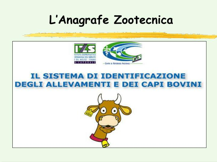 L'Anagrafe Zootecnica