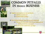 common pitfalls in small business