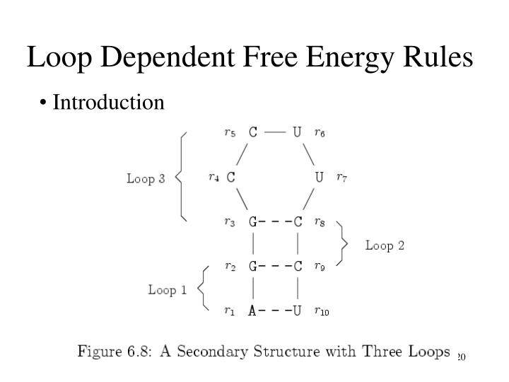 Loop Dependent Free Energy Rules