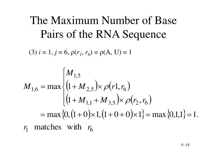 The Maximum Number of Base Pairs of the RNA Sequence
