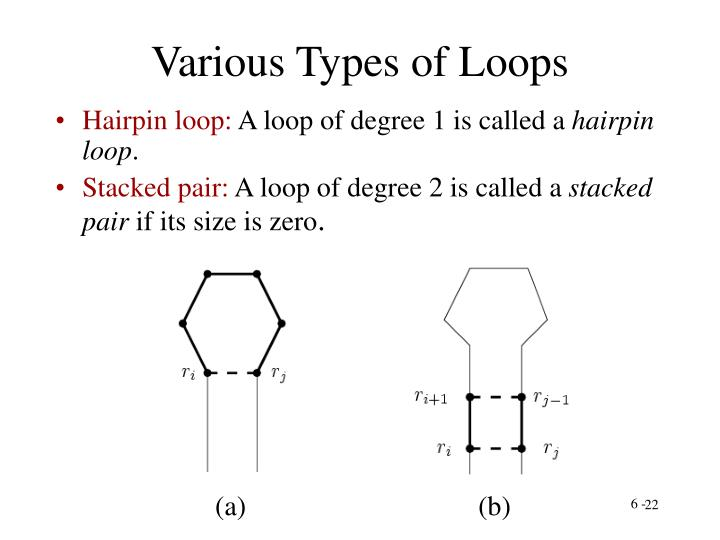 Various Types of Loops