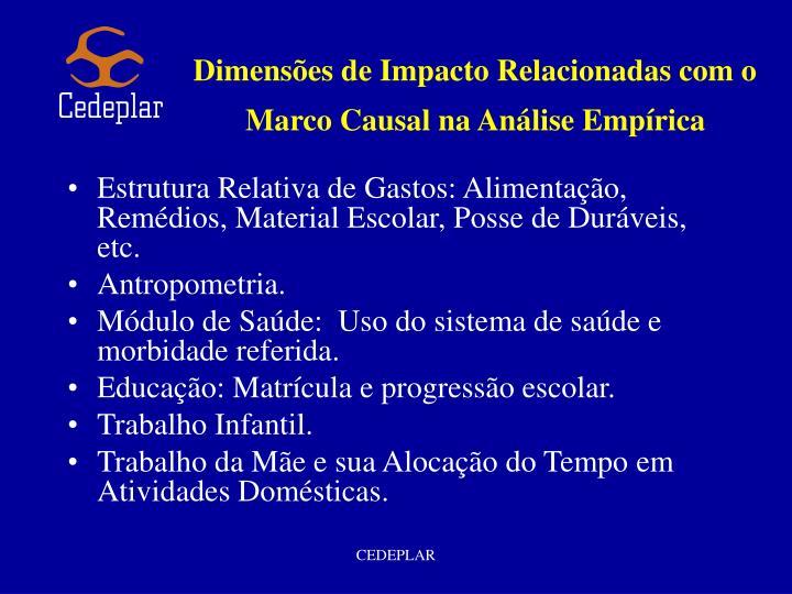 Dimensões de Impacto Relacionadas com o Marco Causal na Análise Empírica