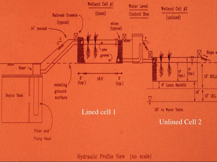 Lined cell 1