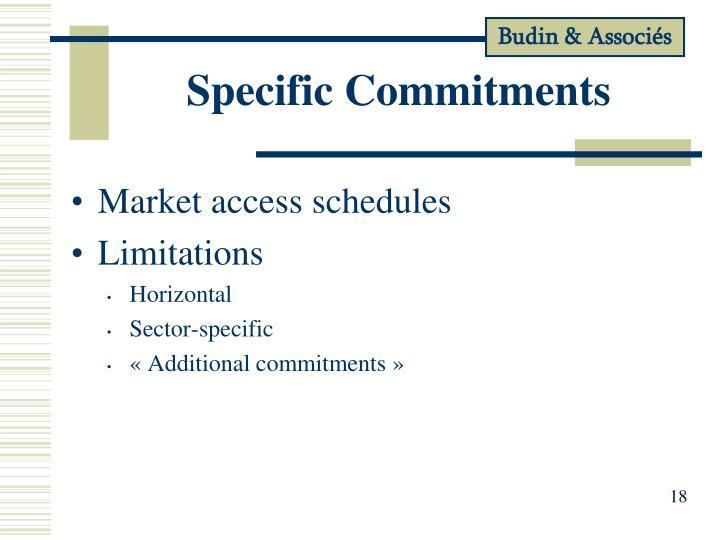 Specific Commitments