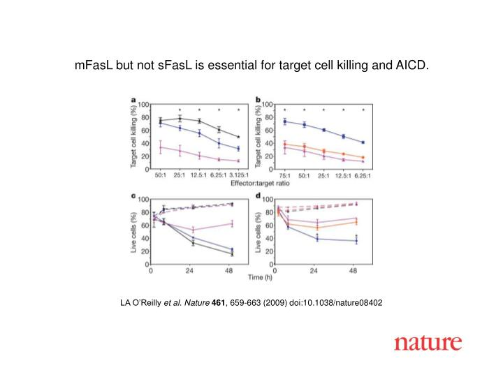 MFasL but not sFasL is essential for target cell killing and AICD.