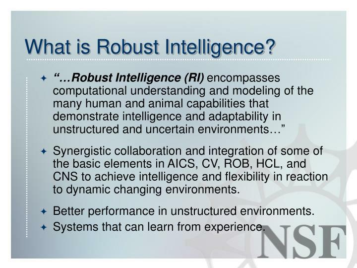 What is Robust Intelligence?