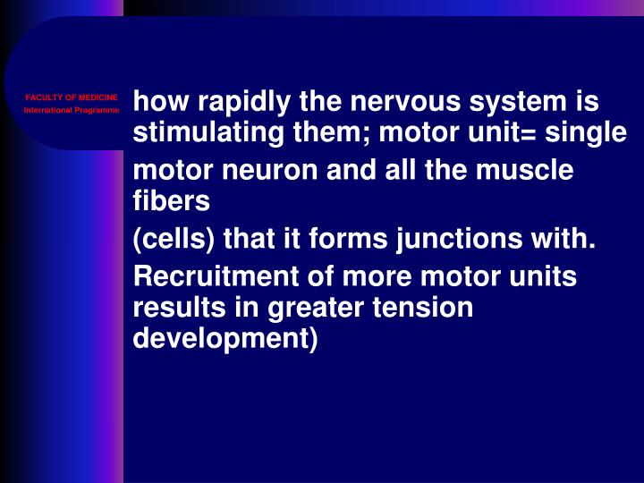 how rapidly the nervous system is stimulating them; motor unit= single