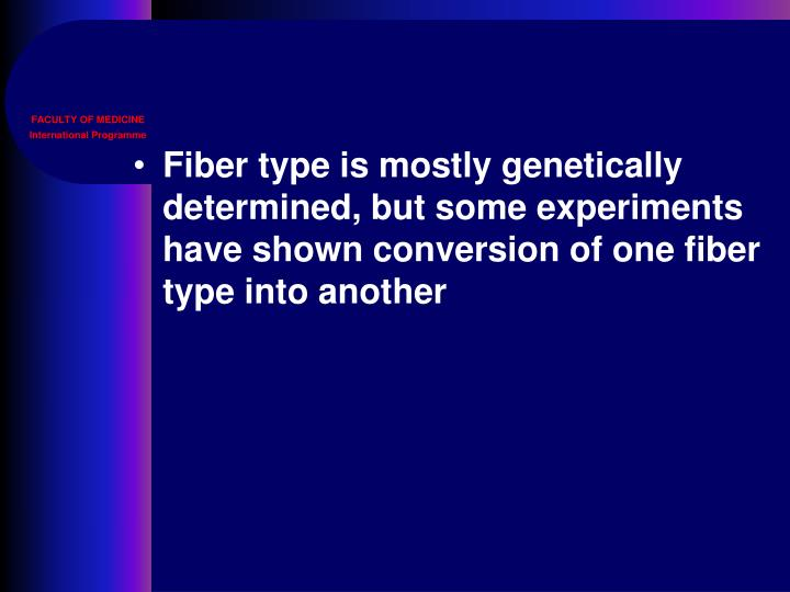 Fiber type is mostly genetically determined, but some experiments have shown conversion of one fiber type into another