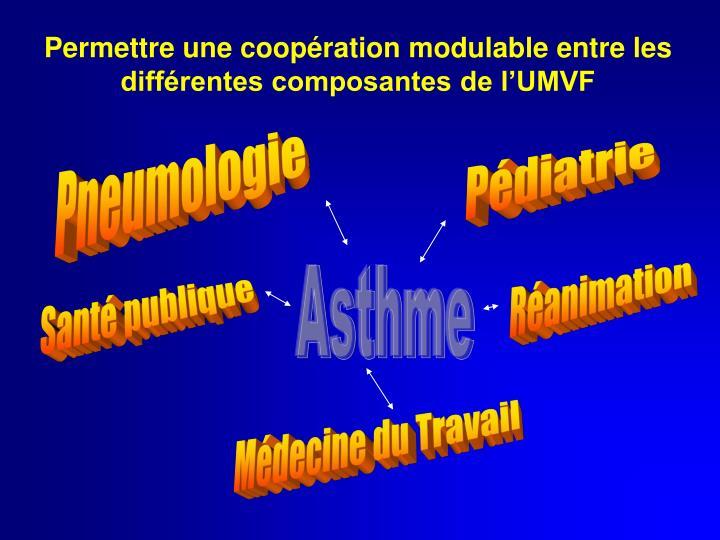 Permettre une coopération modulable entre les différentes composantes de l'UMVF