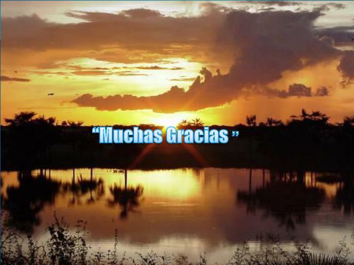 """""""Muchas Gracias"""