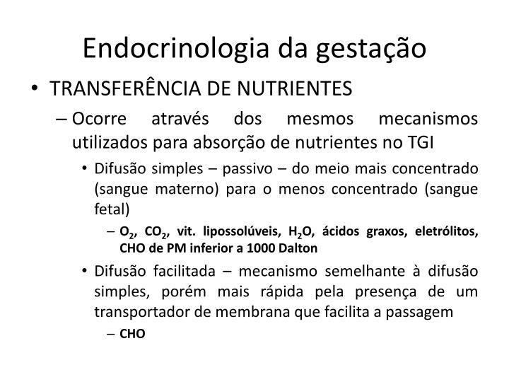 Endocrinologia da gestação