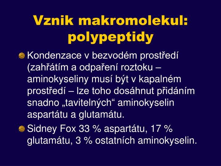 Vznik makromolekul: polypeptidy