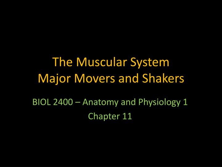 The muscular system major movers and shakers