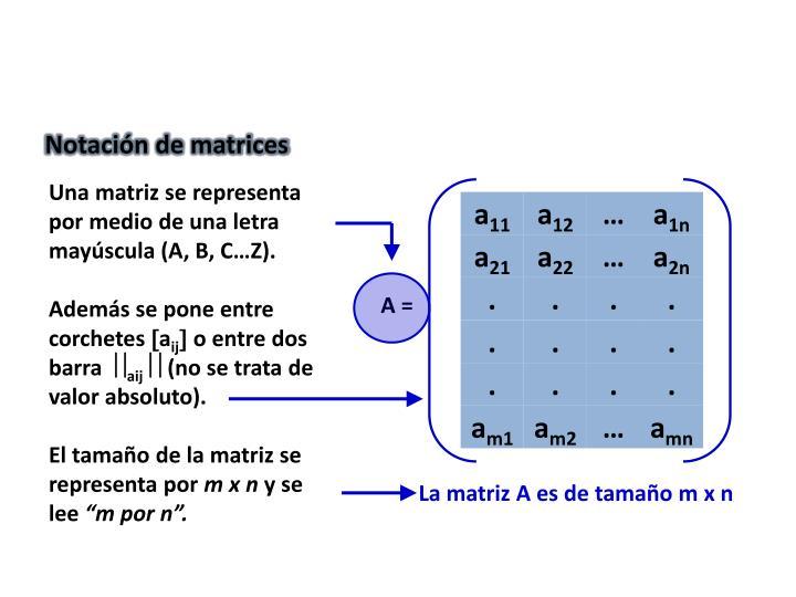 Notación de matrices