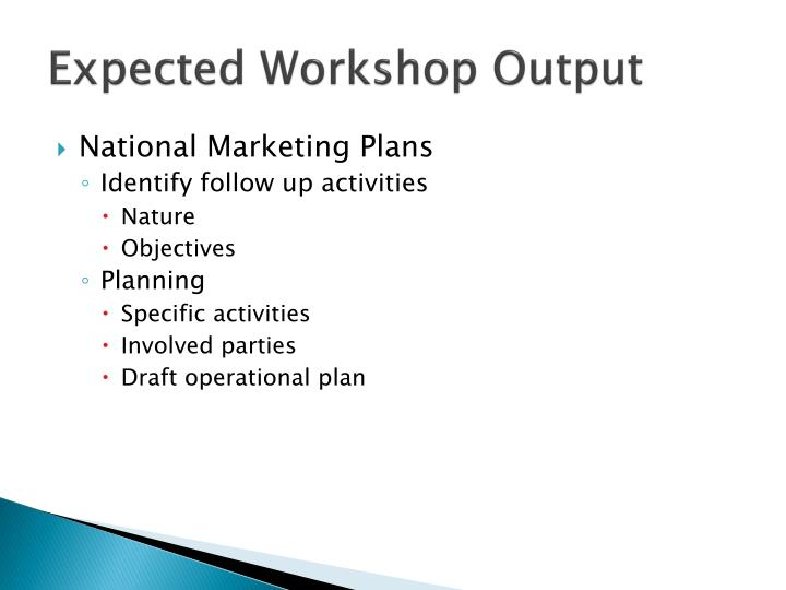Expected Workshop Output
