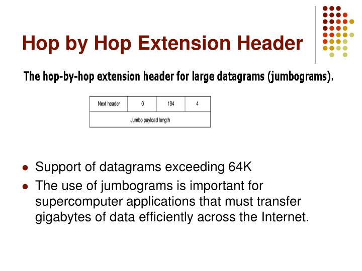 Hop by Hop Extension Header