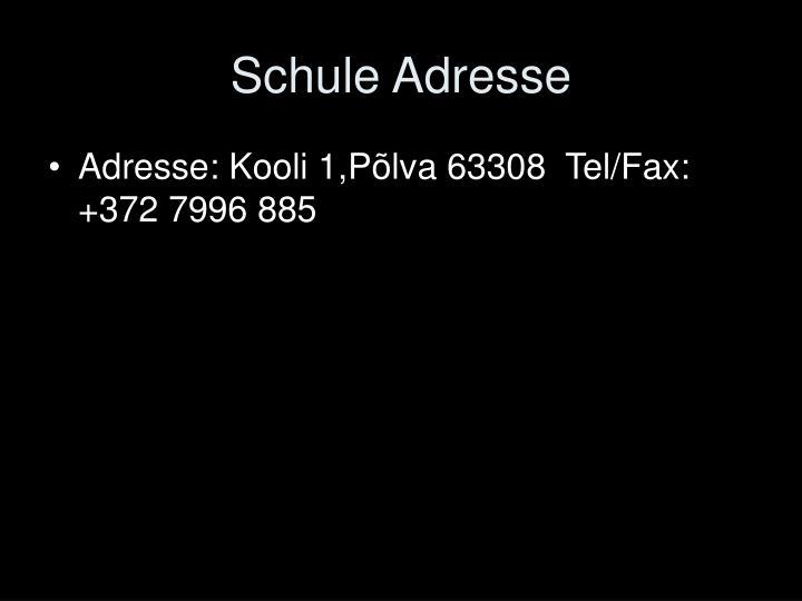 Schule Adresse