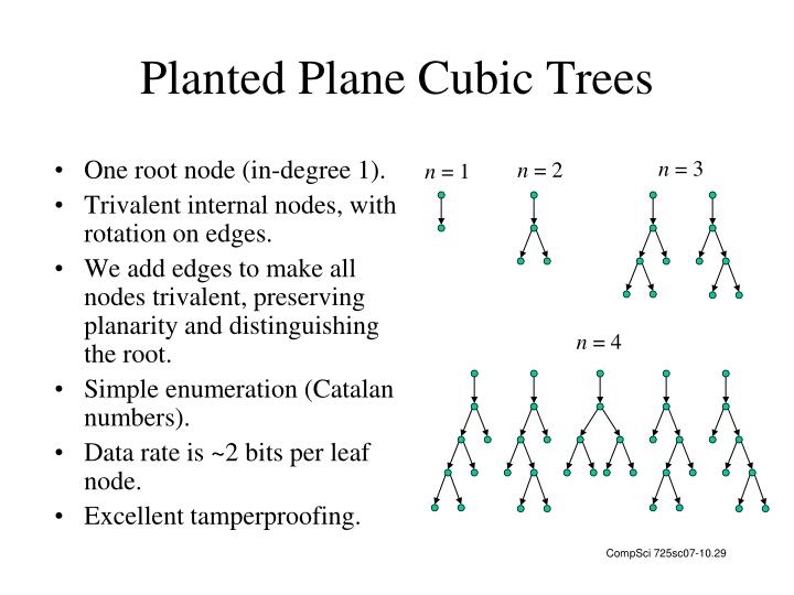 Planted Plane Cubic Trees