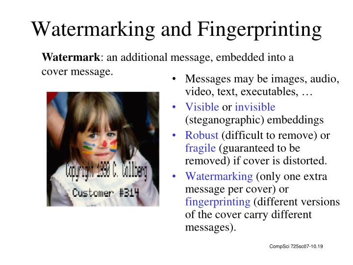 Watermarking and Fingerprinting