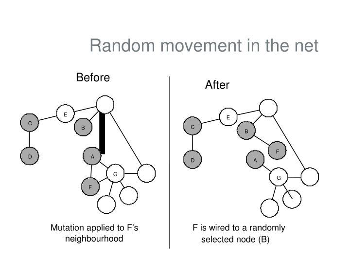 Random movement in the net
