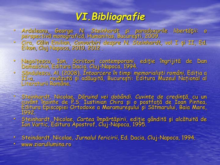 VI.Bibliografie
