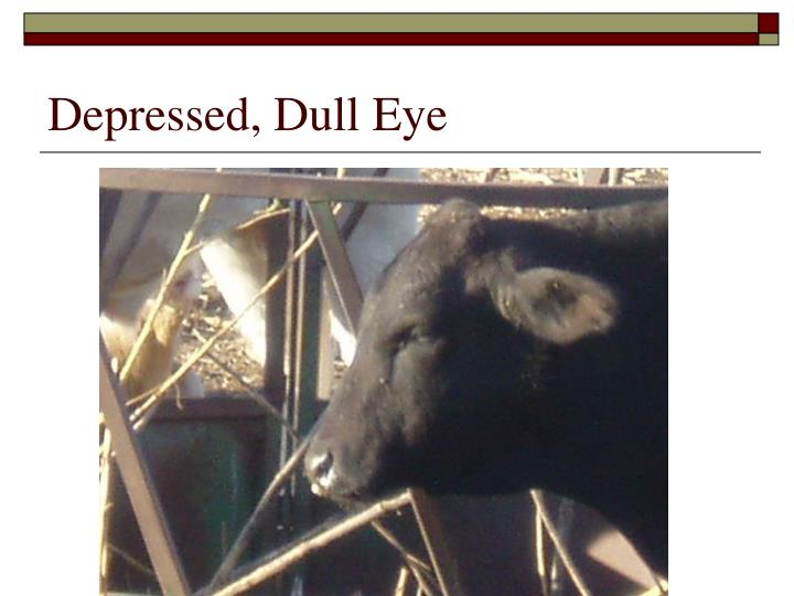 Depressed, Dull Eye