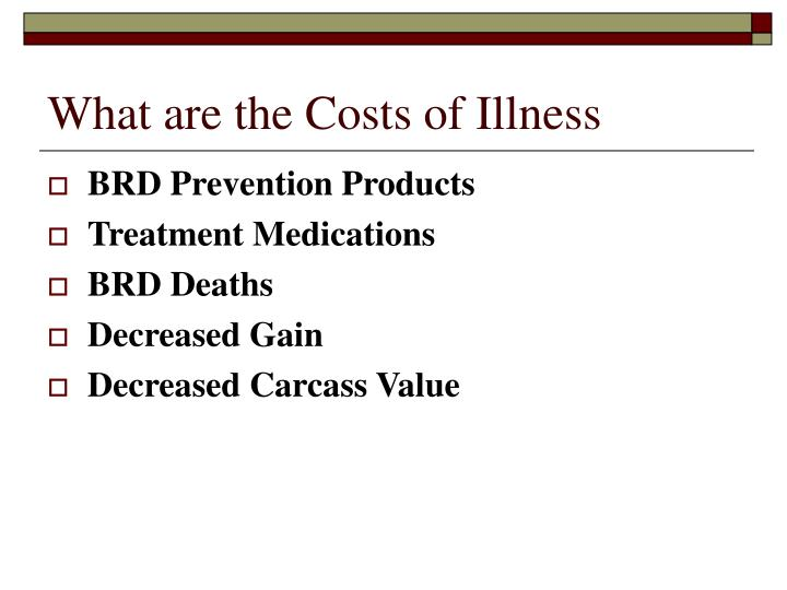 What are the Costs of Illness