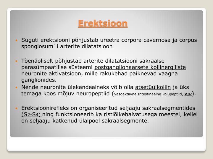 Suguti erektsiooni põhjustab ureetra corpora cavernosa ja corpus spongiosum`i arterite dilatatsioon