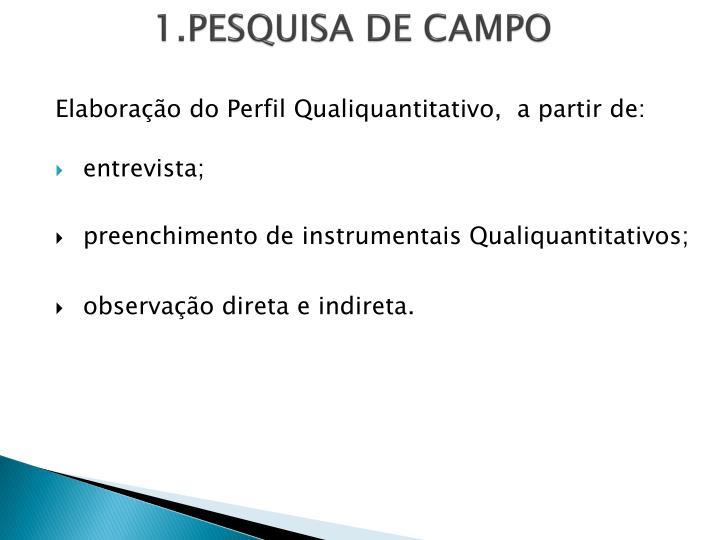 1.PESQUISA DE CAMPO